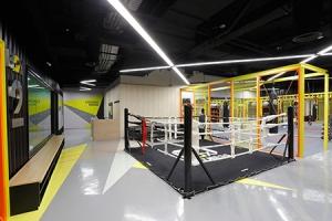 Boxing Zone
